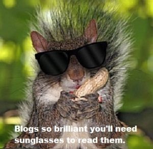 squirrel with sunglasses