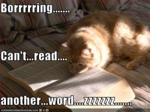 boring book cat